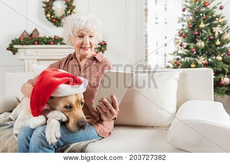 Holiday season approaching. Cheerful old woman is holding smart device and reading while sitting on sofa with her dog on knee. Animal is lying in red Christmas hat. Copy space in the right side