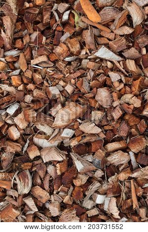 Closeup to dried brown coconut coir husk background for plant growing