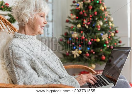 Being informed. Profile of positive mature woman with gray hair is typing on modern laptop while sitting in chair with decorated Christmas tree on background. Copy space in the right side