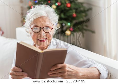Best novel. Cheerful old woman is holding book and looking at camera with joy. She is sitting on sofa with Christmas tree on background. Focus on face portrait with copy space in the right side