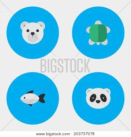 Elements Perch, Panda , Tortoise Synonyms Seafood, Animal And Bear.  Vector Illustration Set Of Simple Fauna Icons.