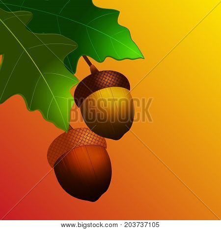 3D Illustration of Autumn Acorn with Leafs Over Yellow and Red Background