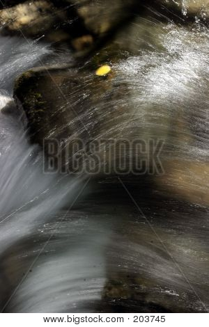 Waterfall With Aspen Leaf