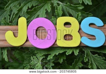 word jobs on a  abstract green background