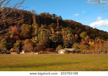 Autumn landscape. Autumn trees. Beautiful orange and red fall forest.
