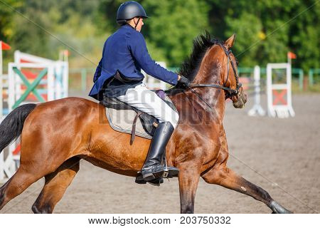 Young sportsman riding bay horse on show jumping competition. Equestrian sport background