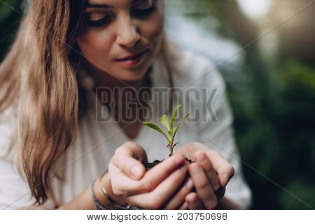 Woman With Young Plant In Hand