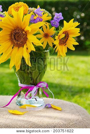 A bouquet of yellow sunflower in glass vase. Sunflower isolated on green garden background.
