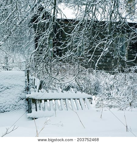Winter Nature,   Old House In Forest