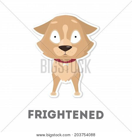 Isolated frightened dog on white background. Funny cartoon animal.