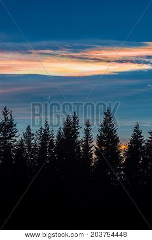 Colorful nacreous clouds, crescent moon and trees