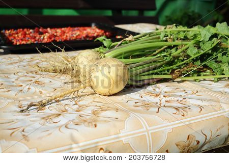 Fresh turnips with green leaves on the table.