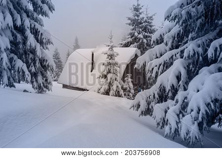 Old Wood Hut Covered With Snow