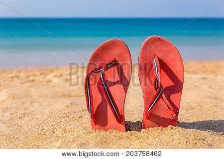 Two red bathslippers upright on beach with sea water