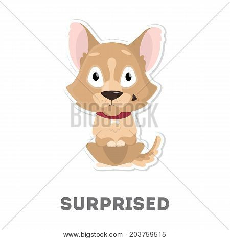 Isolated surprised dog on white background. Funny cartoon animal.