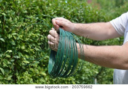 Man's hands winding green wire and maintaining a garden hedge