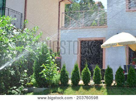 Watering Backyard Garden
