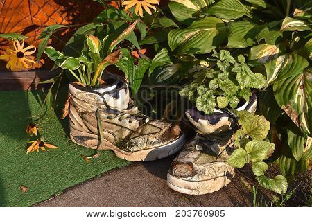 An old crusty pair of athletic shoes are used as plant holders