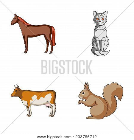 Horse, cow, cat, squirrel and other kinds of animals.Animals set collection icons in cartoon style vector symbol stock illustration .