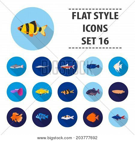 Aquarium fish set icons in flat style. Big collection aquarium fish vector symbol stock