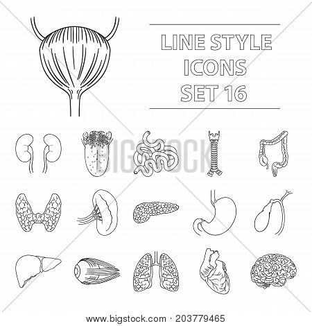 Human organs set icons in outline design. Big collection of human organs vector symbol stock illustration