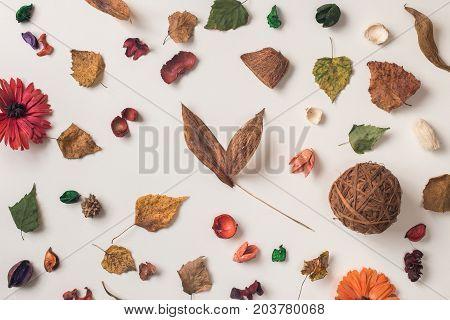 Autumn Conceprual Arrangement