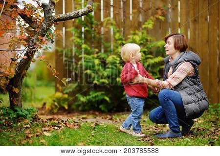 Beautiful middle aged women and her adorable little grandson in domestic garden