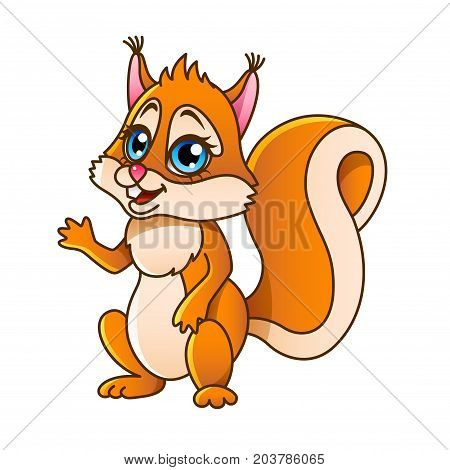 Cartoon squirrel isolated on white vector illustration