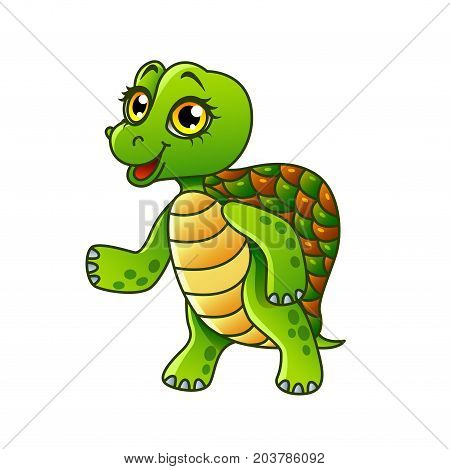 Cartoon turtle isolated on white vector illustration