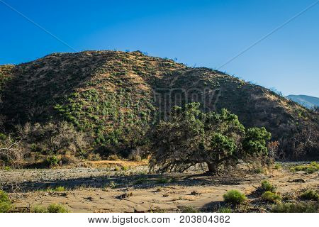 California Riverbed Canyon