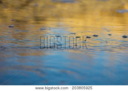 water in the lake in the background