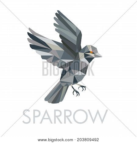 Low polygon style illustration of a Sparrow a small passerine bird flying with text below