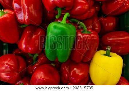 Colored of pepper bell. Pile of pepper bell. Background and texture