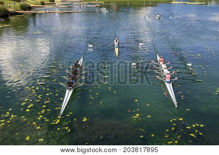 Young people training rowing on the lake Jarun in Zagreb