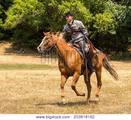Confederate Soldier On Horseback