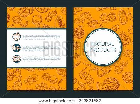 Vector doodle handdrawn fruits and vegetables vegan, healthy food card, brochure, flyer template. Illustration of banner hand drawn