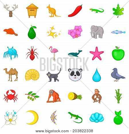 Rodent icons set. Cartoon style of 36 rodent vector icons for web isolated on white background