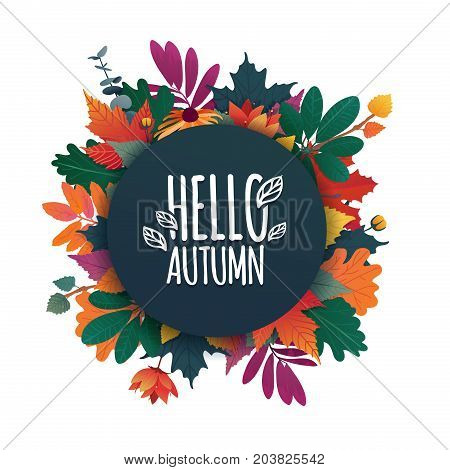Round banner with the Hello Autumn logo. Card for fall season with white frame and herb. Promotion offer with autumnal plant, leave and flower decoration