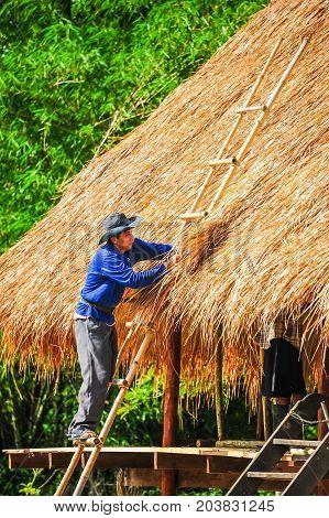 Saraburi Thailand - June 4 2012: Man with blue shiet standing on bamboo stairs making thatch roof of house in rural of Saraburi Thailand