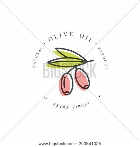 Vector set of packaging design element and icon in linear style - olive oil - healthy vegan food. Logo sign. Extra virgin olive oil