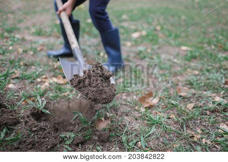 Man dig a shovel in the garden, agricultural work, preparing for the cultivation of vegetables, autumn yard work. Worker digs the black soil with shovel in the vegetable garden, man loosens dirt in the farmland, agriculture and tough work concept