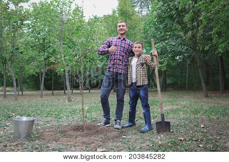 Let me help you. Little boy helping his brother to plant the tree while working together in the garden, sunday. smiling face. spring time. Good day for gardening.
