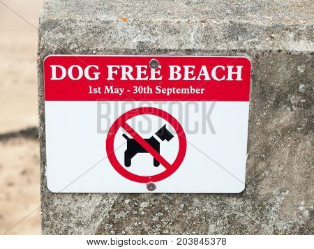 Dog Free Beach Red And White Sign On Wall Beach Dovercourt Harwich