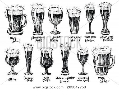 Beer glass and mugs types. Vector hand drawn vintage illustrations. Drinks with foam in varied glassware with it German titles.