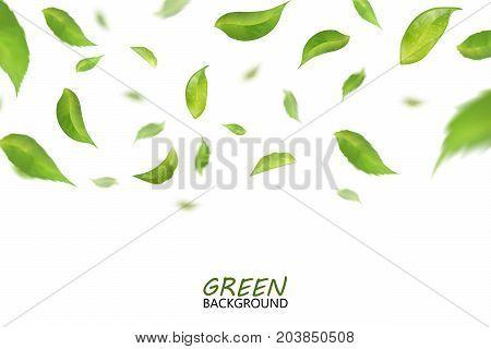 Falling fresh flying green leaves, quality 3d imitation. Vector