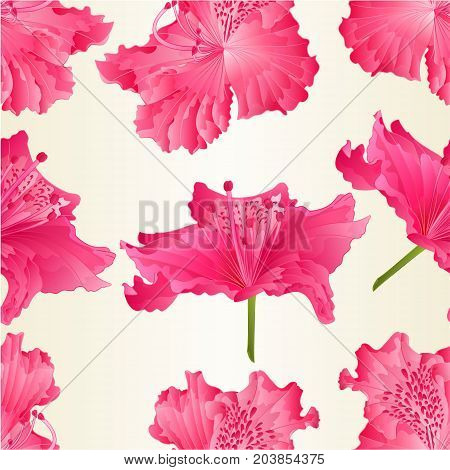 Seamless texture beautiful Flowers of pink Rhododendrons Ponticum vector Illustration editable hand drawn
