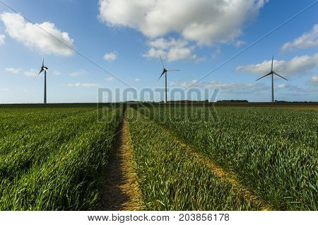 Windmills For Electric Power Production In Agricultural Fields In Normandy, France. Renewable Energy