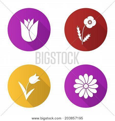 Flowers flat design long shadow glyph icons set. Rosebud, poppy, tulip, chamomile. Vector silhouette illustration