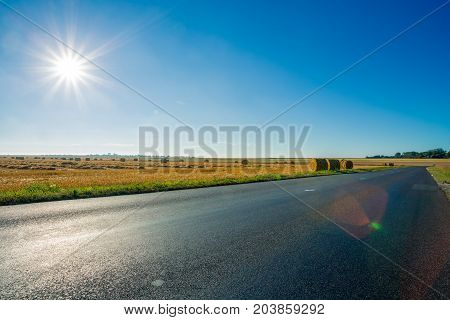 Empty Asphalt Country Road Passing Through Yellow Wheat Field. Country Landscape On Sunny Summer Day