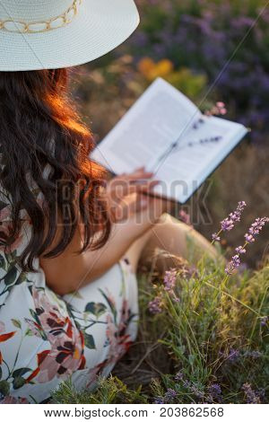Romantic Reading Woman With Book On Lavender Field